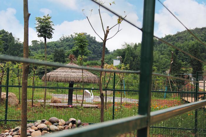 beplay体育靠谱百虎世界动物乐园